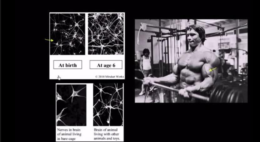 Growing Minds: Salman Khan